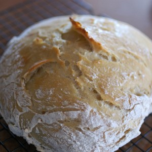 Soft-and-Crusty-Bread-1