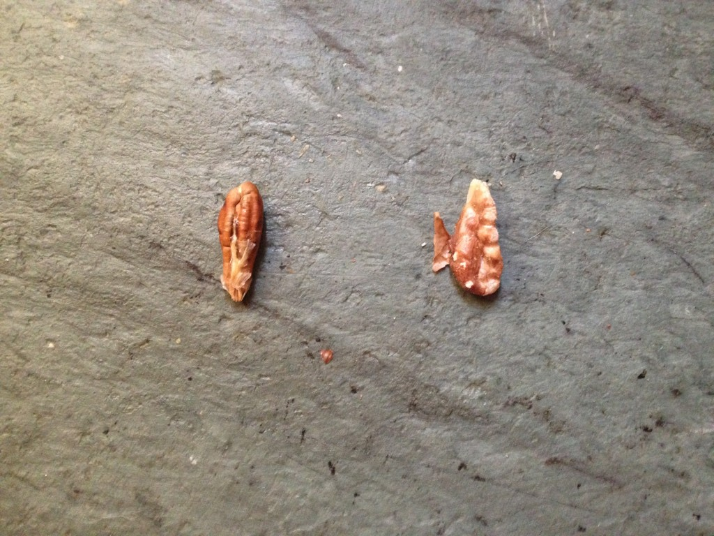 Guess which one is the walnut? (Hint: it's the one on the right!)