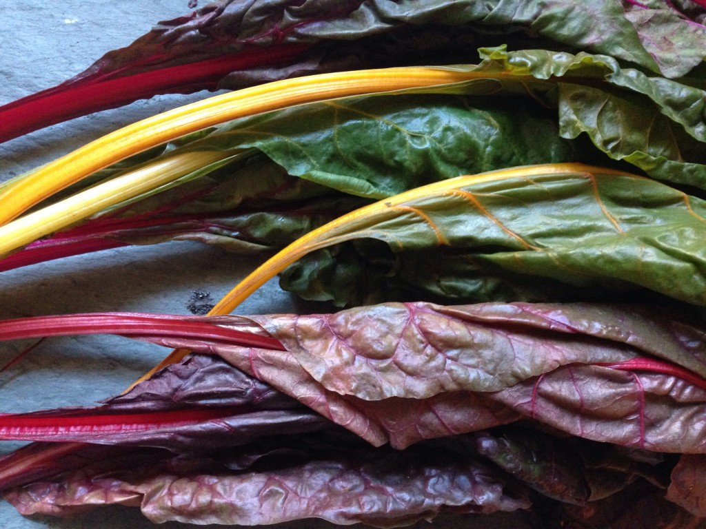 Rainbow Swiss Chard is so pretty!